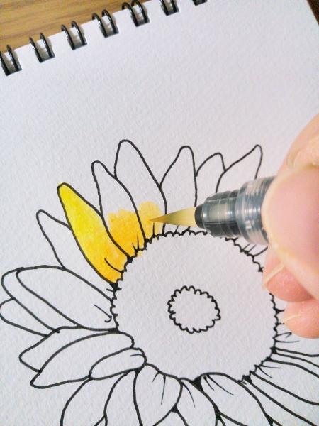 水彩絵の具、基本の塗り方・描き方