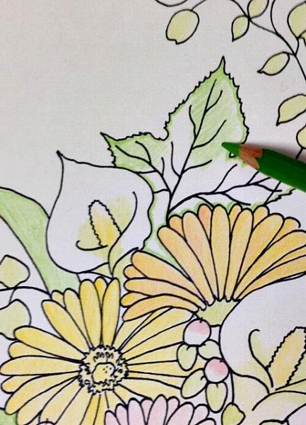 色鉛筆の上手な塗り方のコツ